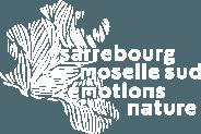 Sarrebourg Moselle Sud
