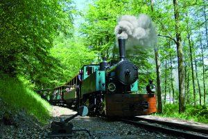 train touristique d'Abreschviller